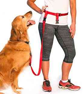 The Buddy System Hands Free Dog Leash