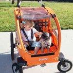 Joovy Cocoon X2 Jogging Stroller
